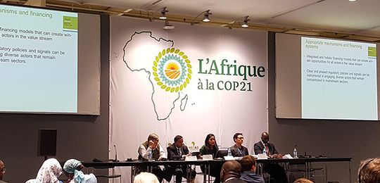 The event was held in the Africa pavilion at the Paris climate summit (Photo: IIED)