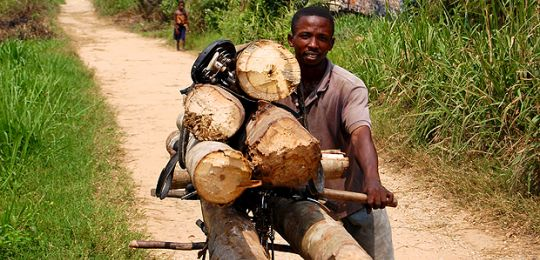 A man transports logs by bicycle. Services provided by informal economies, such as small-scale logging, are often not integrated into plans for green growth (Photo: Jolien Schure/CIFOR, Creative Commons, via Flickr)