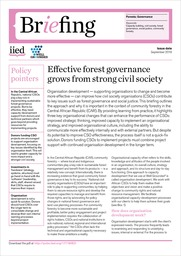 Effective forest governance grows from strong civil society