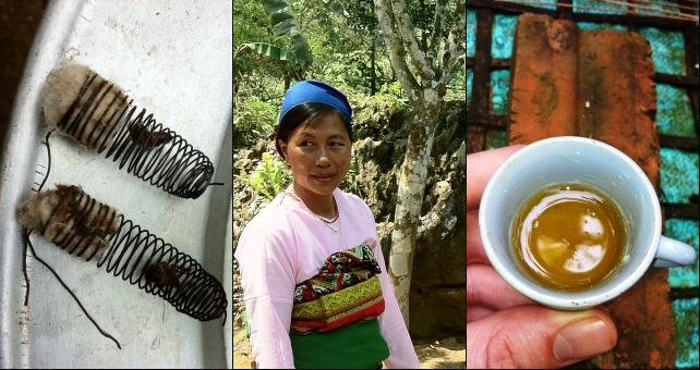 Female beekeeper, Truong Thi Thoi, and a small teacup of honey from her beehive.