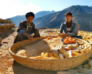 two women with a big basket of corn