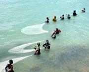 Women pulling fishing nets through shallow water