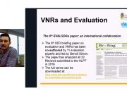 More than 70 people joined the webinar about evaluation and voluntary national reviews. You can watch a recording of the webinar at the bottom of this page (Image: IIED)
