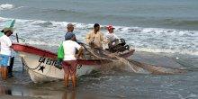 Fishermen hauling in a net