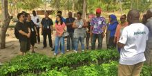 Chinese and African delegates visit a nursery and learn about a reforestation project in Pemba, Mozambique (Photo: Duncan Macqueen/IIED)