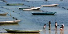 Seaweed farming in Nusa Lembongan, Bali, is an example of an alternative livelihood project (Photo: Yeowatzup via Creative Commons http://creativecommons.org/licenses/by/2.0/)