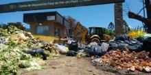 Rubbish and black bin bags are strewn around