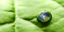 The Earth is reflected in a drop of water on a leaf (Photo: Juan Horna, Creative Commons, via Flickr)