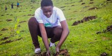 A young man on a hillside, planting a tree.