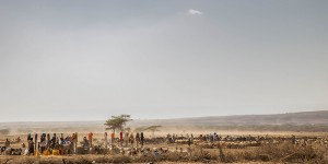Desertic landscape