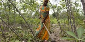 Woman holding a hoe in a field.