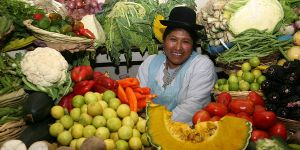 Agricultural biodiversity in a Peruvian market. Photo: Bioversity International/A. Camacho