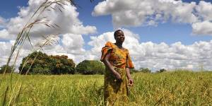 A small-scale farmer in Tanzania