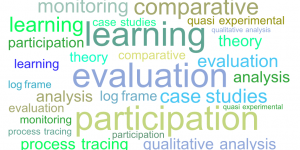 A word cloud with words relevant to monitoring, evaluation and learning (Image: IIED)