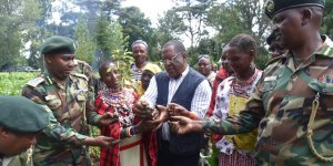 A group of people holding a tree seedling