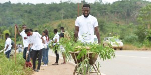 Young man pushing a cart with branches.