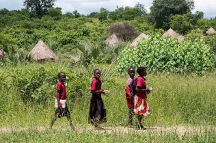 Children from the village walk to the school. School fees ranked as one of the top reasons for villagers to engage in cutting mukula trees