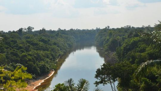 Extractive reserve Ituxi in Amazonas State, Brazil - home to 18 communities who harvest Brazil nuts, manioc flour, fish, oil (Copaifera sp.) and timber. (Photo: Ana Carolina Vieira/ IFT)