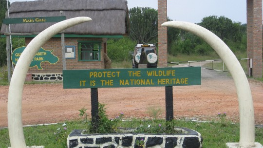 "At the entrance Queen Elizabeth National Park a sign says ""Protect the wildlife, it is the national heritage"""