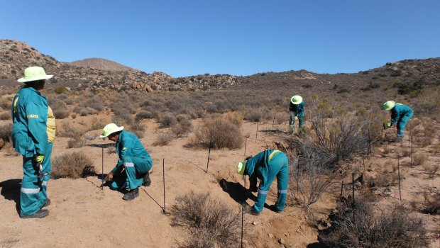 Workers carry out landscaping